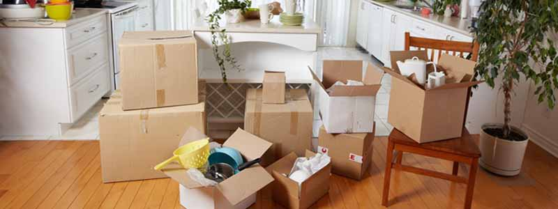 Domestic Moving